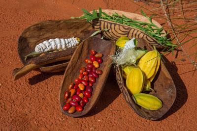 Trays of indigenous fruit